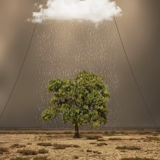 PHOTOGRAPHIE : &#8216;Hossein Zare&#8217;, un photographe minimaliste !