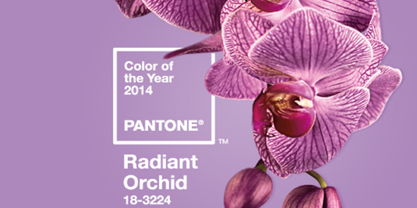 COLOR OF THE YEAR : 18-3224 Radiant Orchid