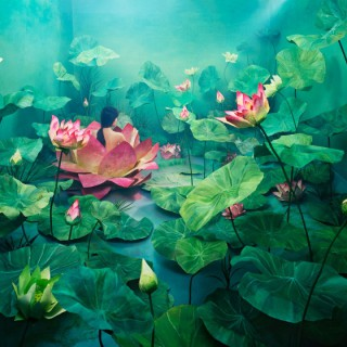 PHOTOS : Les tableaux-photos de JeeYoung Lee