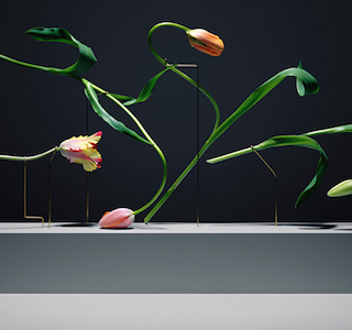 PHOTOGRAPHIE : Postures by Carl Kleiner