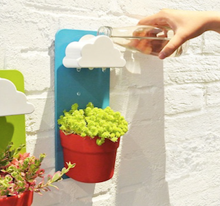 DECO : Little Clouds for houseplants !