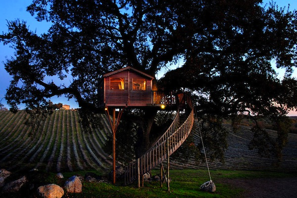 Wooden-Tree-House-in-Tuscany1-900x602