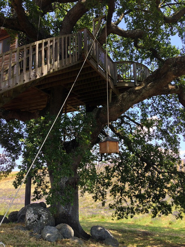 Wooden-Tree-House-in-Tuscany7-900x1200