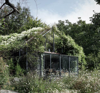 ARCHI : The Green Box House in the Green!