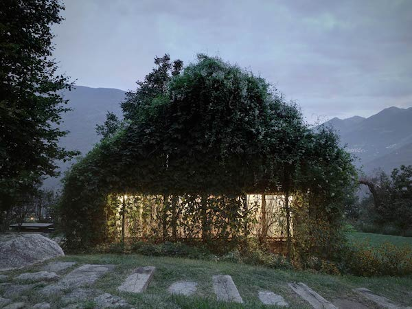 the-green-box-house-11