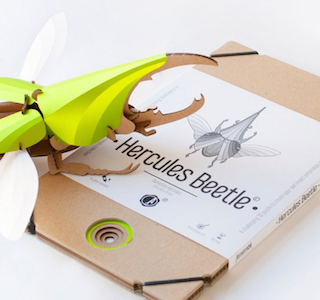 KIT : DIY Paper Beetle Sculpture
